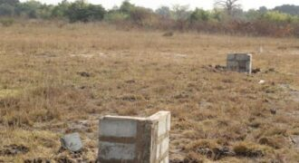 Two plots for sale at Niiboi Town