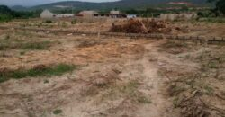Two and half plots for sale @ Ofankor